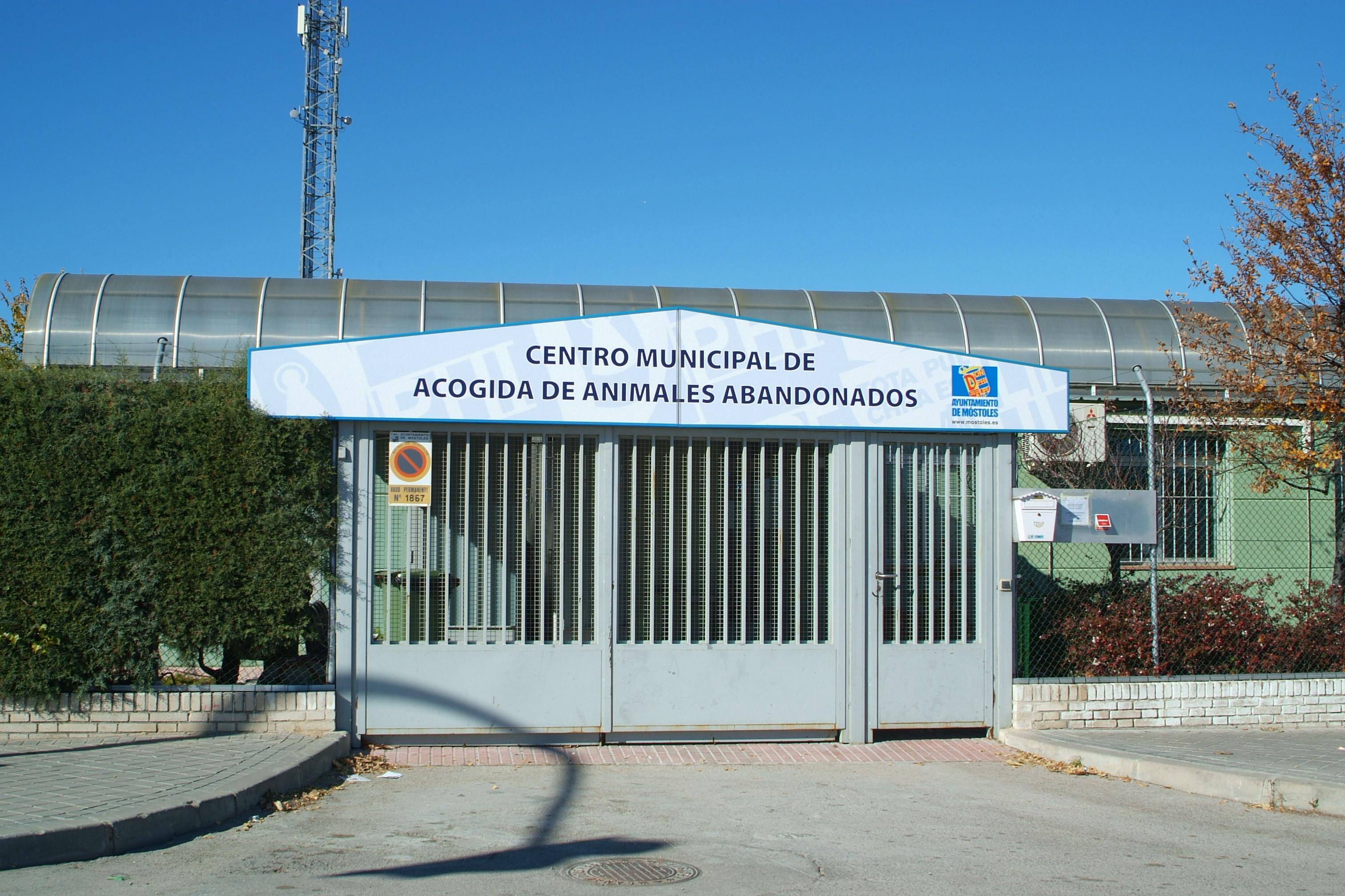 http://sur-madrid.com/online/?p=4149