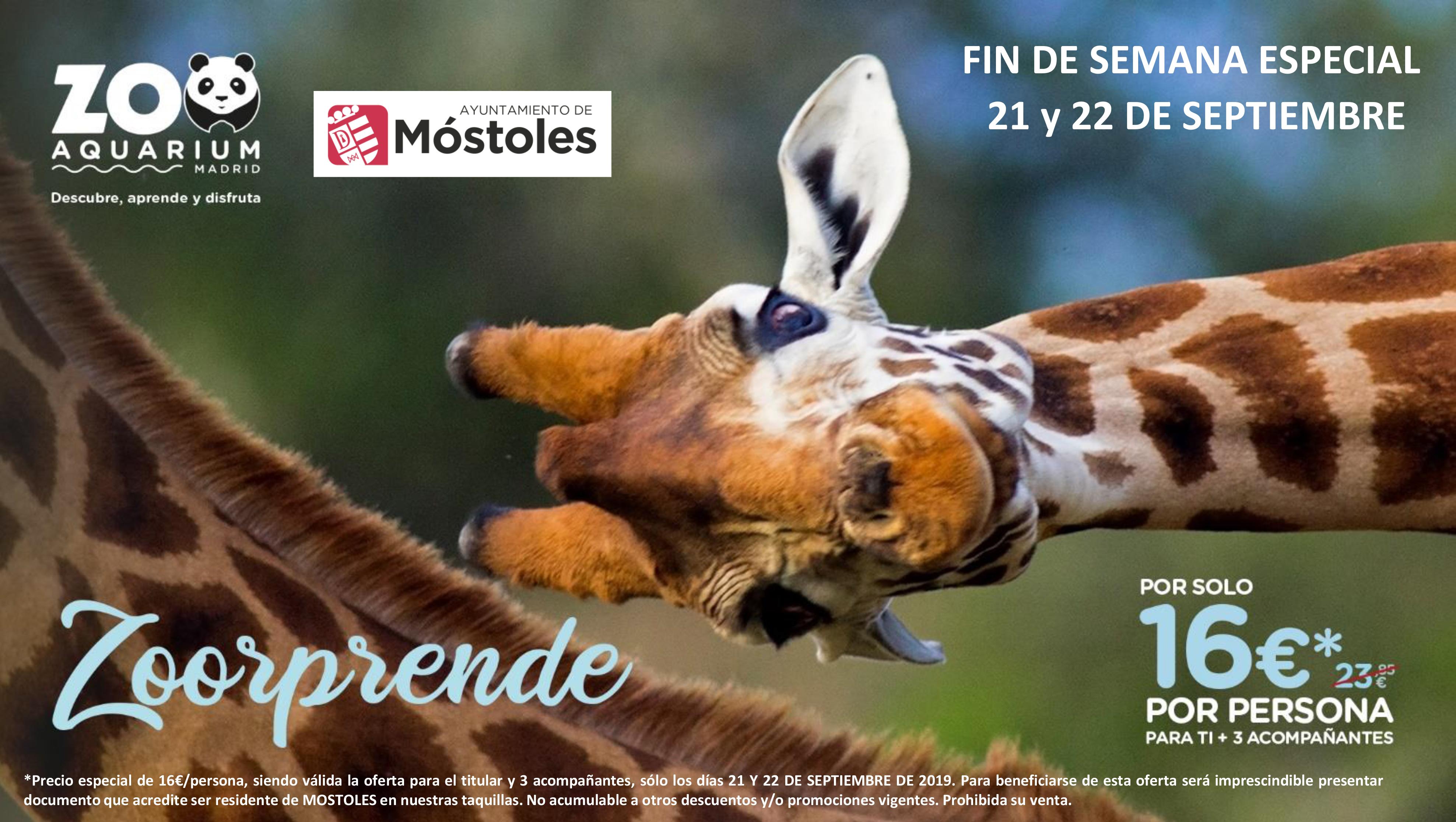 http://sur-madrid.com/online/?p=27232