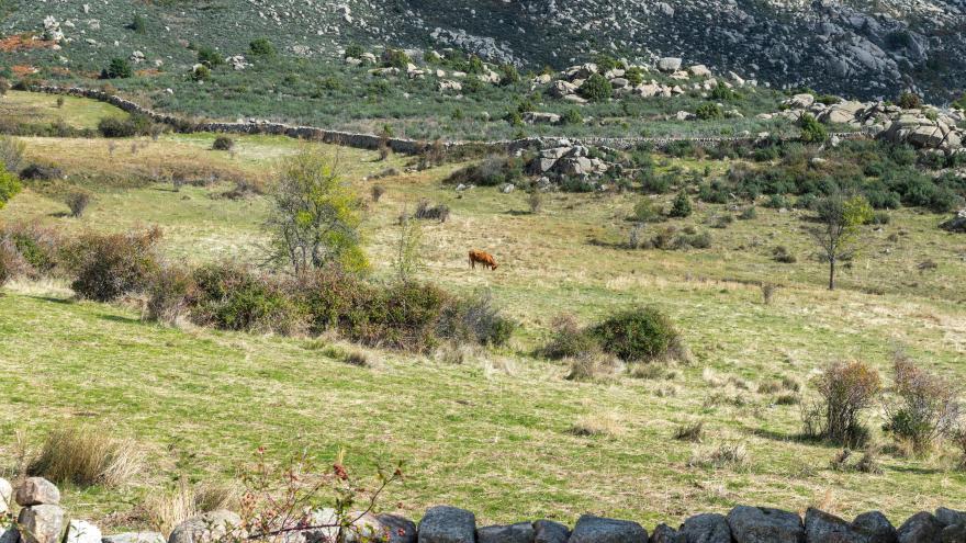 Texto Alternativo: La Comunidad permite desde el lunes estacionar en los grandes aparcamientos de la Sierra de Guadarrama