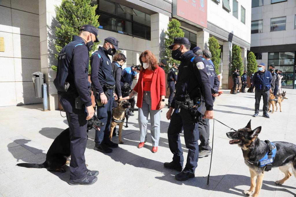 Texto Alternativo: Getafe acogió unas jornadas de prácticas del curso de guías caninos